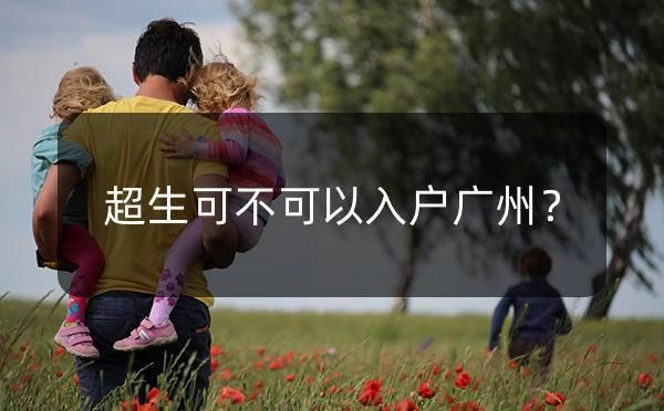 超生可以入户广州吗?广州超生入户新政策解读_广州米兔入户咨询