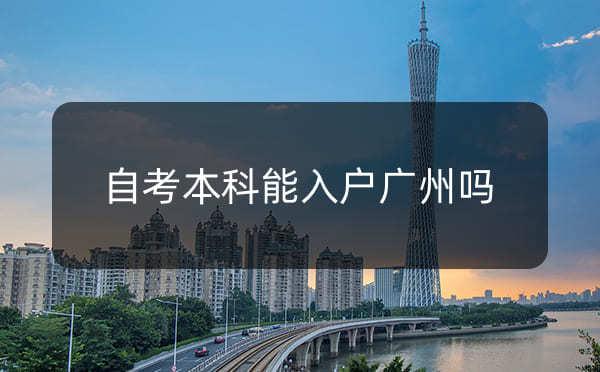自考本科可以申请入户广州吗?成考本科可以入户广州吗?_广州米兔入户咨询