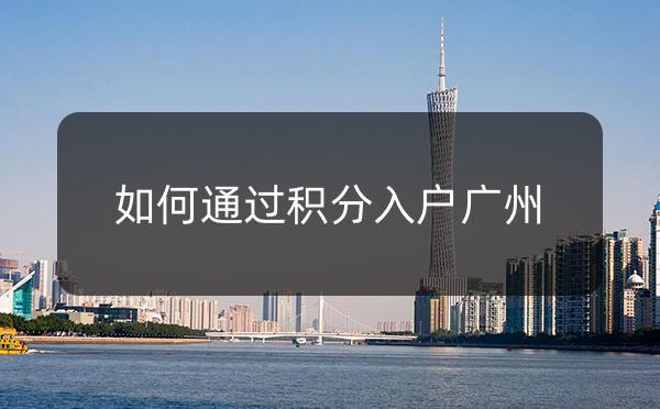 如何能够通过积分入户广州?_广州米兔入户咨询