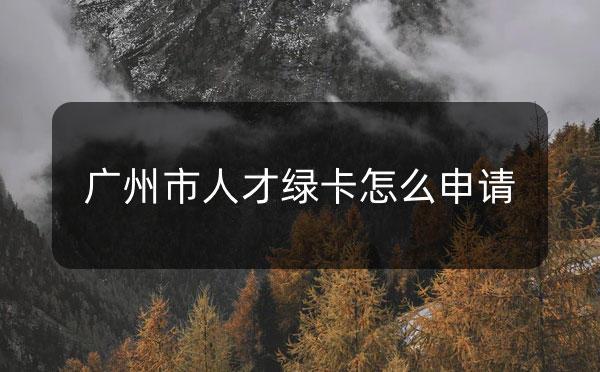 广州市海珠区、黄埔区的人才绿卡怎么申请?_广州米兔入户咨询